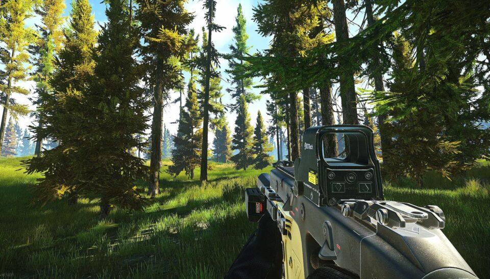 Escape from Tarkov Best Vector Builds EFT Gun Presets